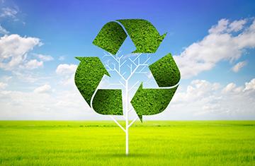 ניקיון משרדים ירוק